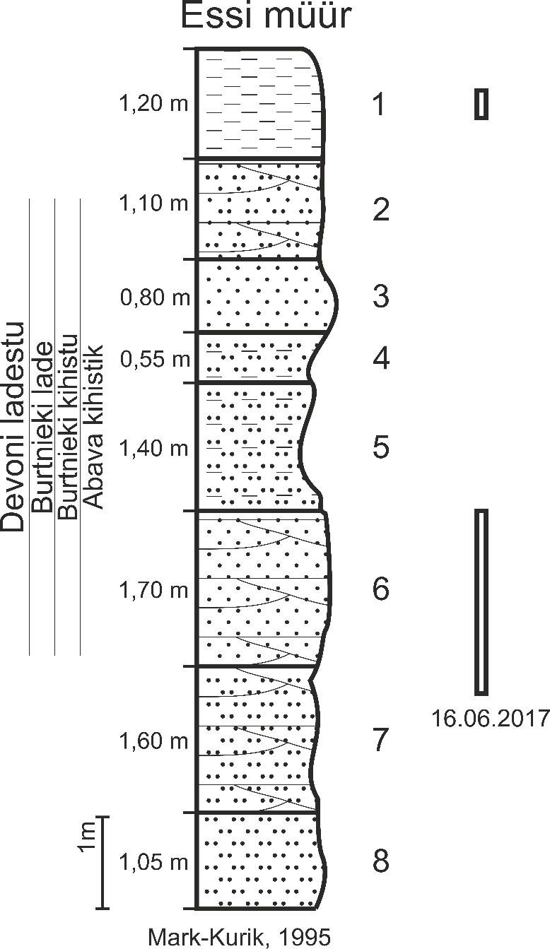 Essi paljandi läbilõige. Mark-Kurik (1995) andmetel paljanduvad Burtnieki lademe Abava kihistiku erinevad liivakivid, aleuroliidid ja savid. Ristkülikutega on märgitud 16.06.2017 paljanduvad osad (joonis: Paiste T.).