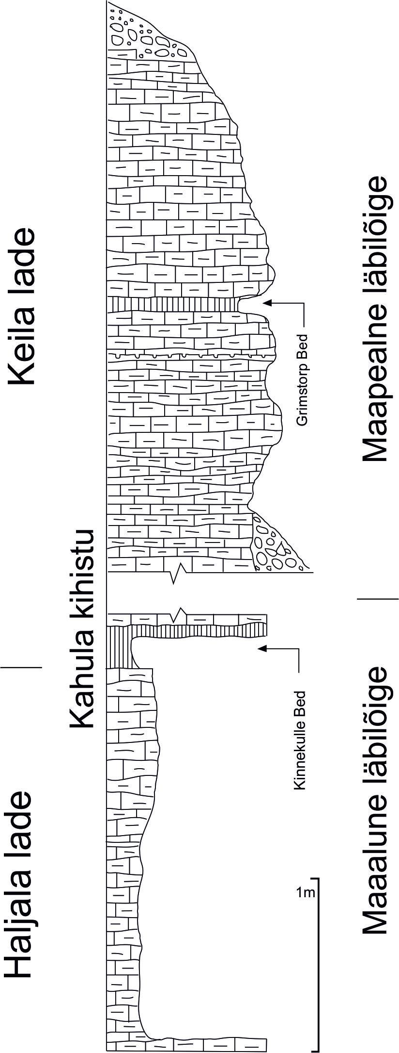 Keila lademe piiristratotüübi Pääsküla täisprofiili läbilõige Hints, 2004 põhjal.