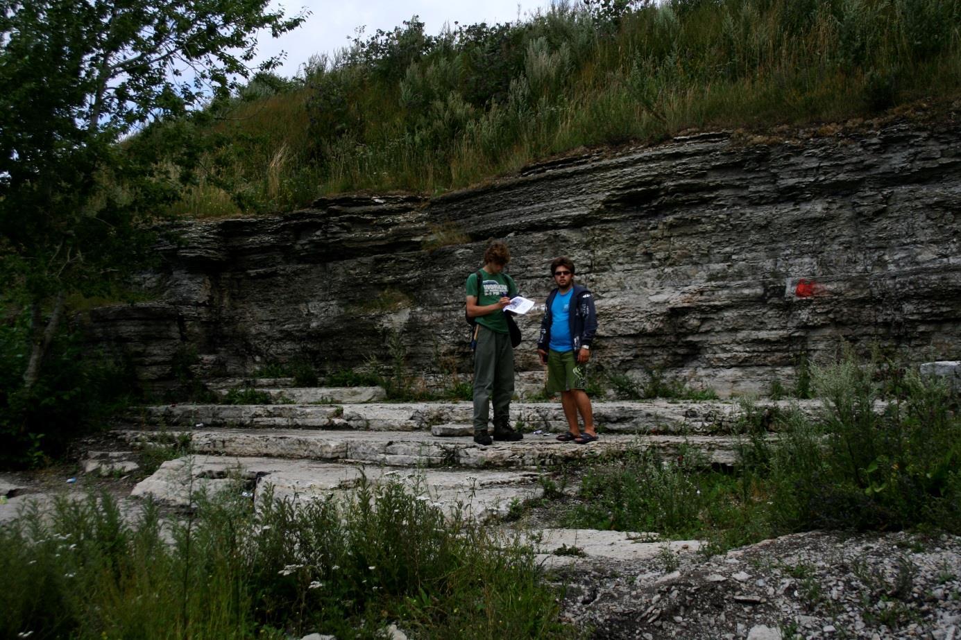 Lasnamäe vana paemurru paljand enne idasoppi (foto: R. Helde, 2012).