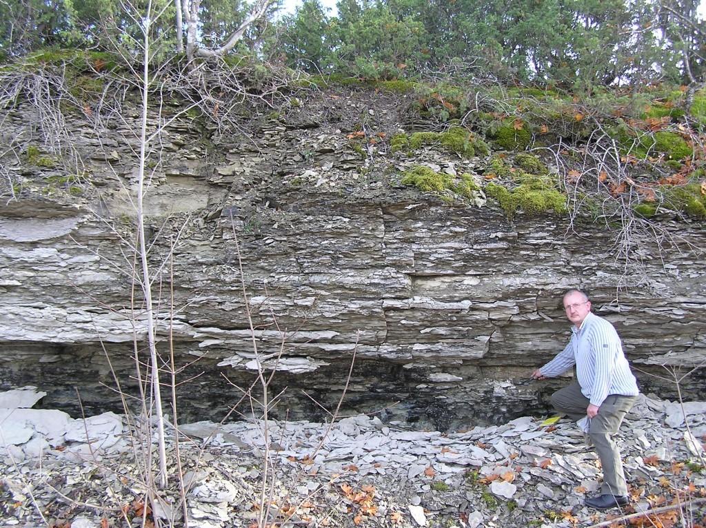 Madise astangu läbilõige. Madise kihistiku lubjakivid paiknevad vasaraga viidatud piirist ülespoole (foto: L. Ainsaar, 2008).