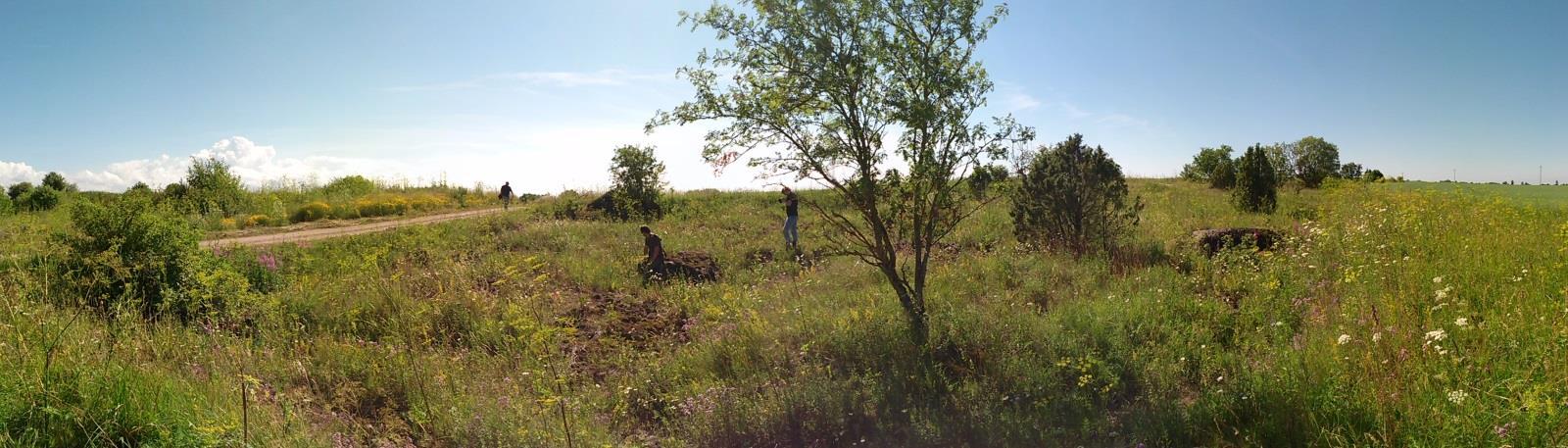 Malla vana paemurru asukoht (foto: T. Meidla, 2014).