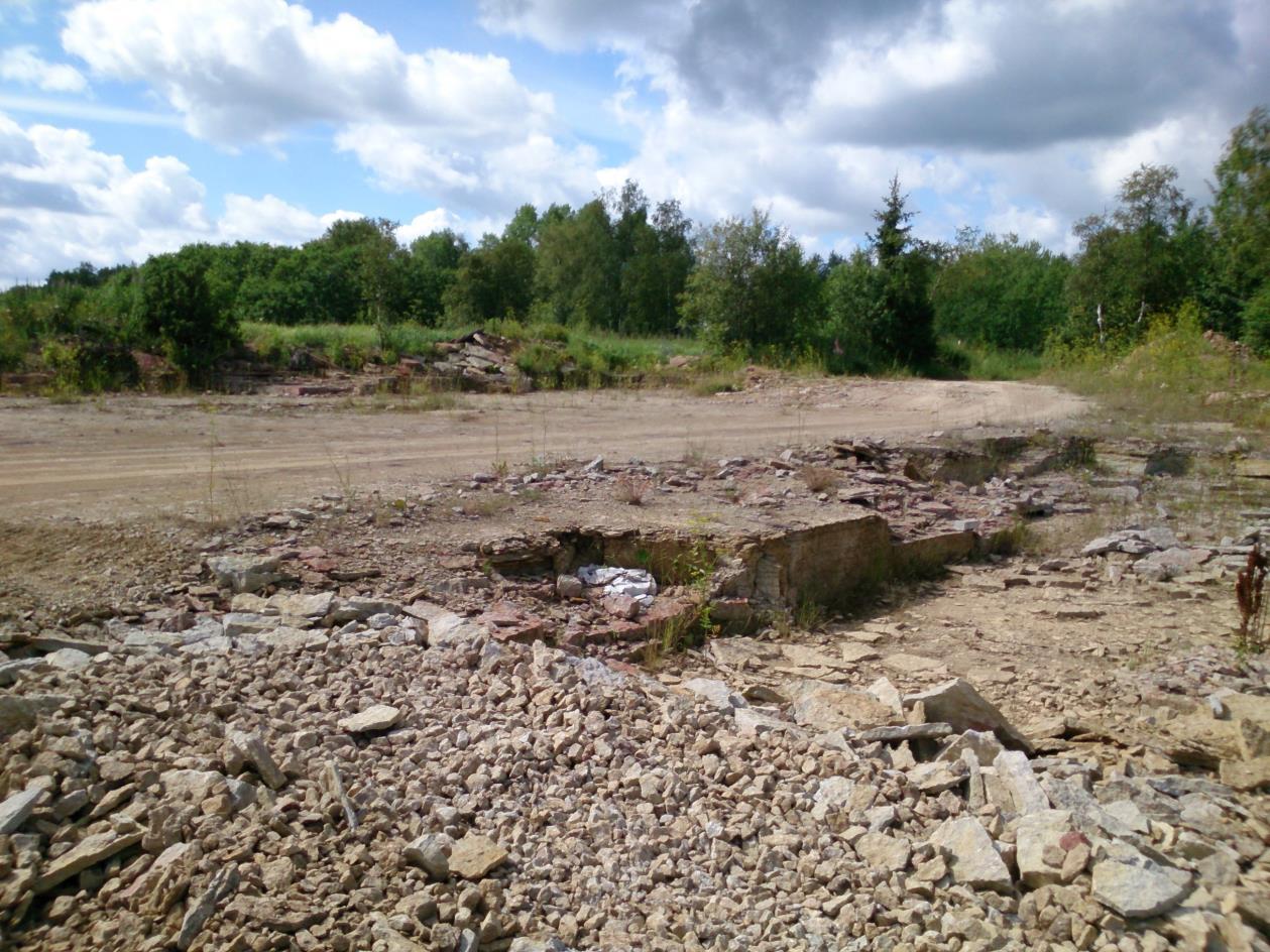 Ojaküla paemurru esimene astang eemal ja teine astang esiplaanil (foto: T. Ani, 2014).