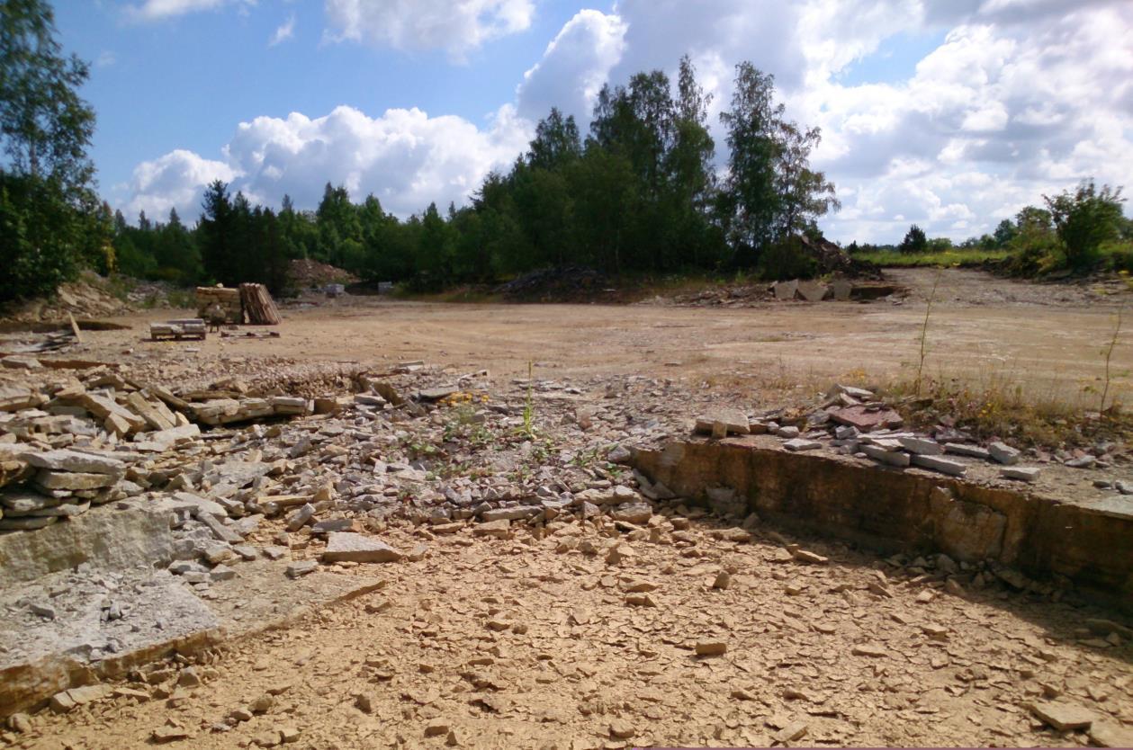 Ojaküla paemurru teine astand. Näha hiljutisi paemurdmise jälgi (foto: T. Ani, 2014).