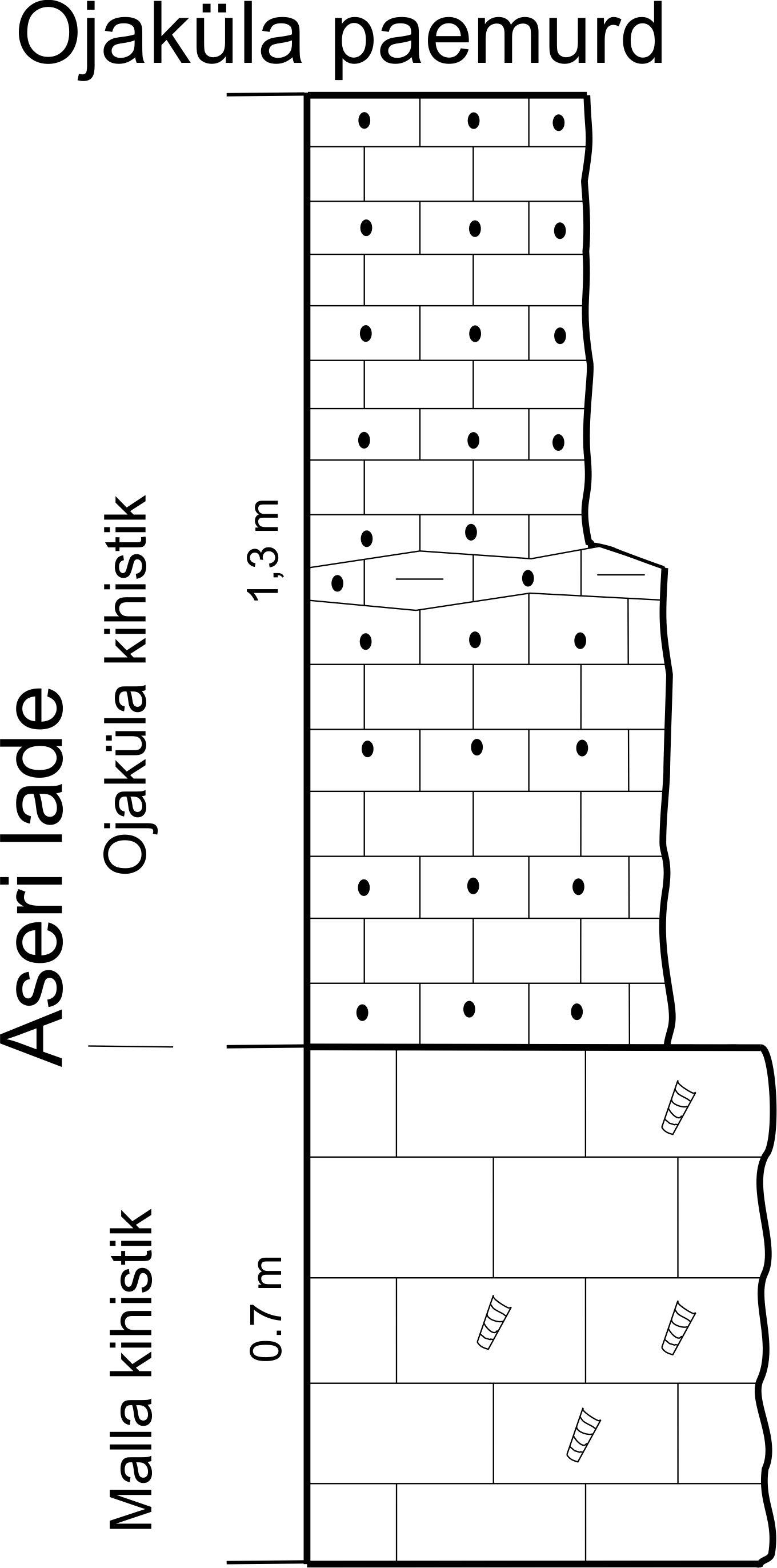 Ojaküla paemurru läbilõige, 2014. (joonis: Paiste T.)