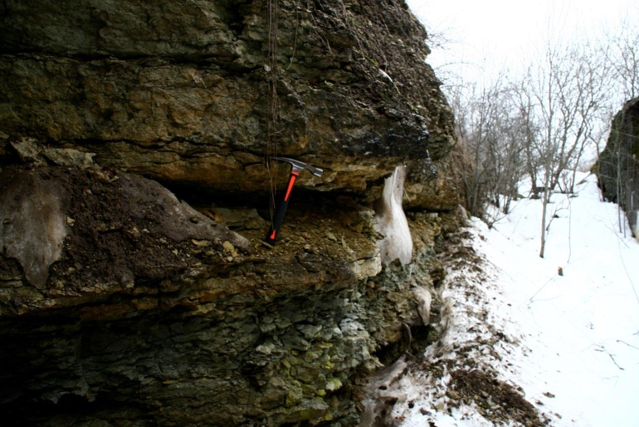 Pääsküla kõviku paljandis paljanduv Grimstorpi bentoniit pildi keskel paljandil asuvas tühimikus. Grimstorpi bentoniidist kõrgemale jäävad Pääsküla kihistiku lubjakivid (foto: S. Soomer, 2013).