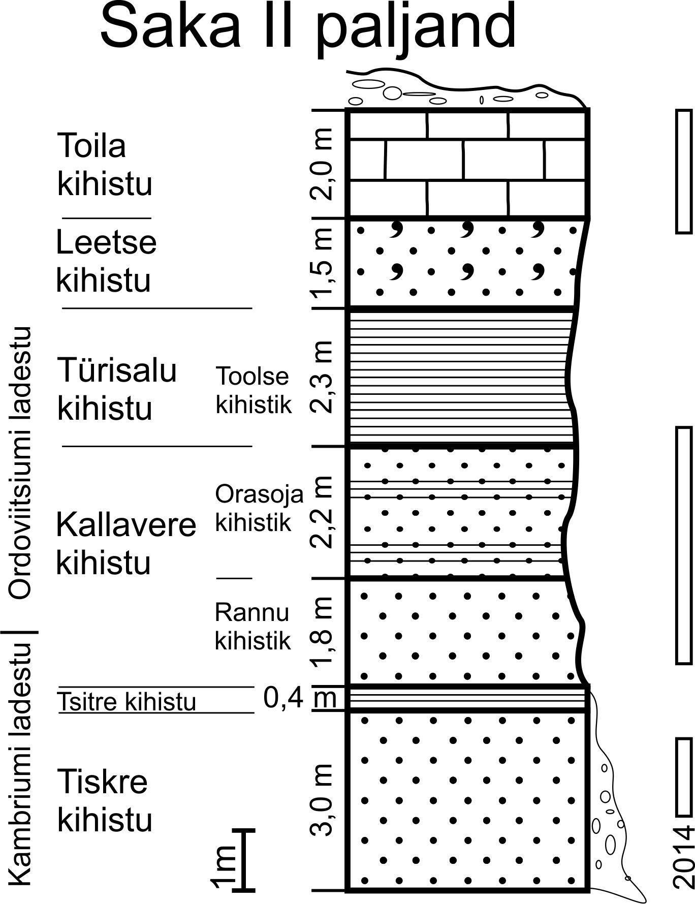 Saka II läbilõige I. Puura (1996, lk. 13, joonis 30) järgi (joonis: T. Paiste).