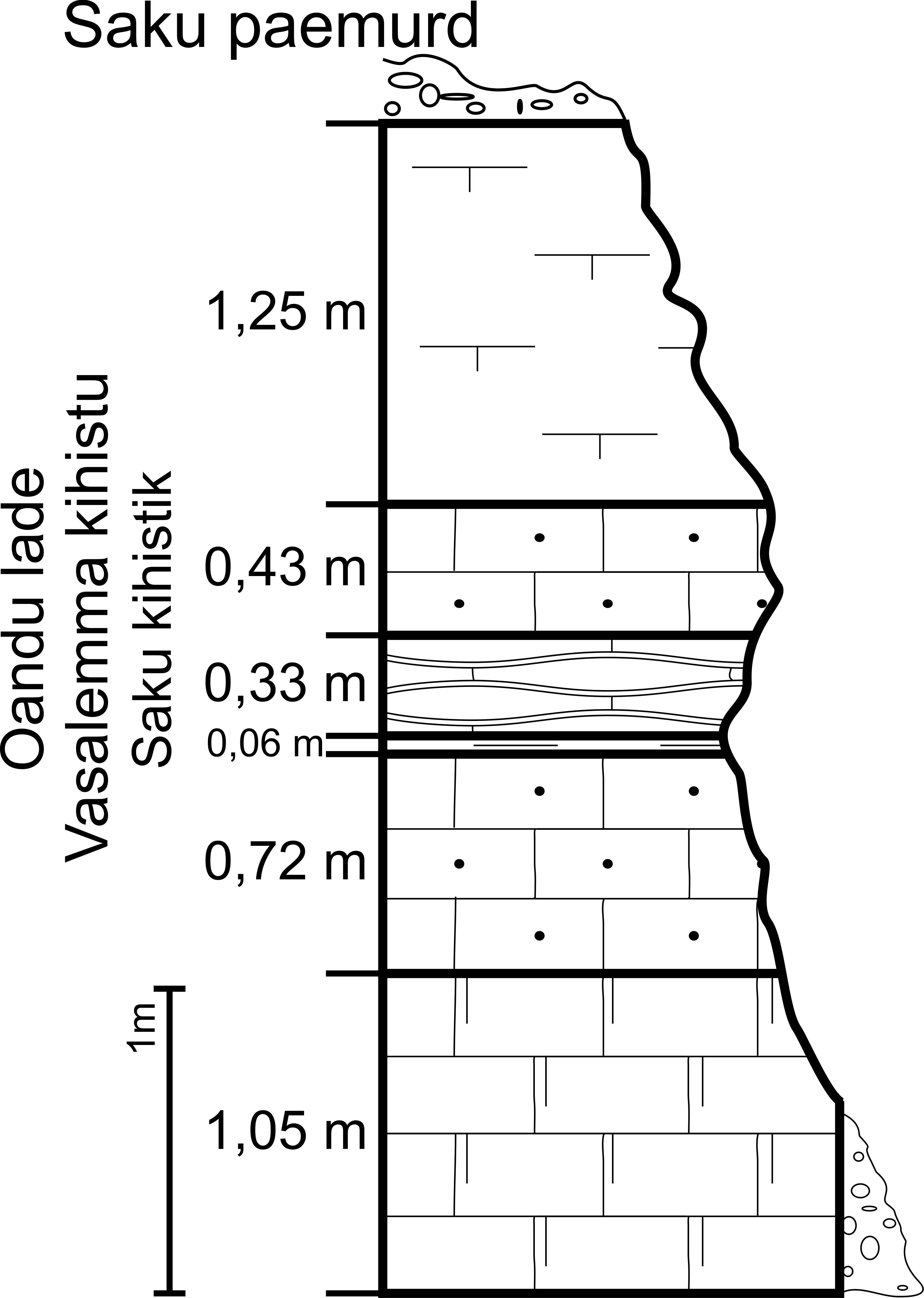 Saku paemurru läbilõige 2012 aastal. (joonis: Paiste T.)