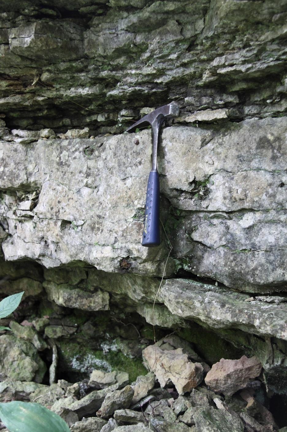 Suurupi paljandis paljanduv Suurupi kihistiku monoliitne liivakas lubjakivi (vasara peast allpool)(foto: T. Meidla, 2012).