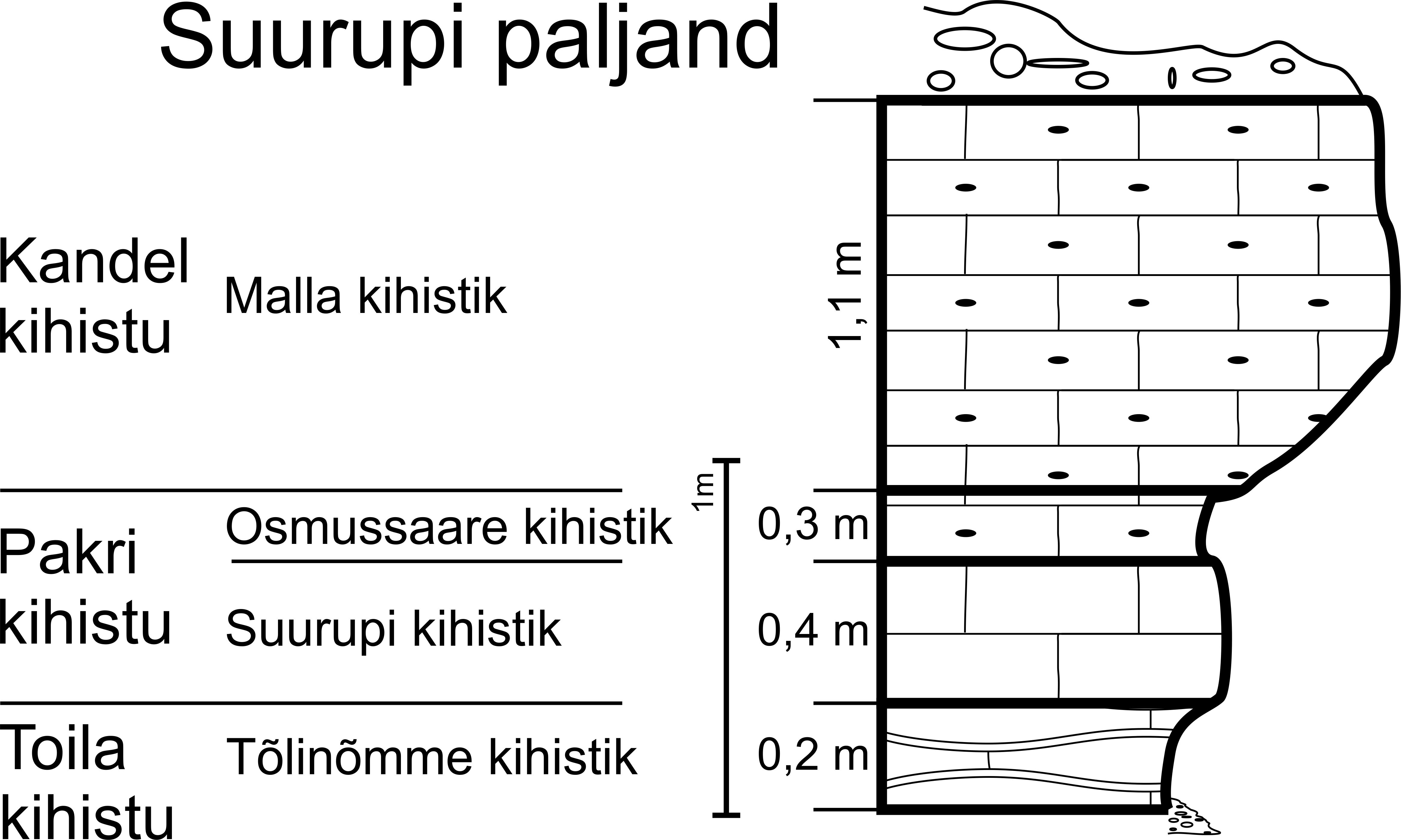 Suurupi paljandi läbilõige, 2012. (joonis: Paiste T.)